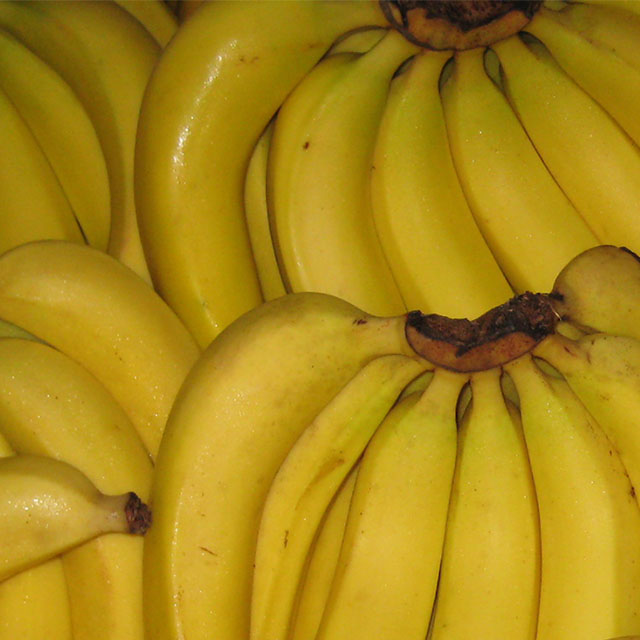 Science To Protect Queensland S Banana Industry
