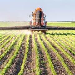 Residue blankets curb pre-emergents