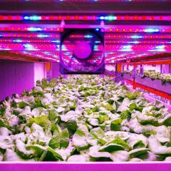 Modern crop breeding for future food security