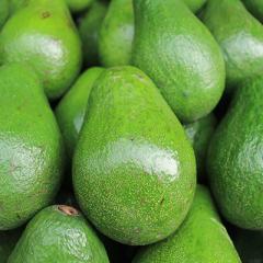 Smashing avocado disease threats