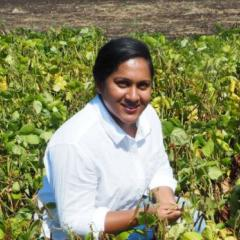 Geetika Geetika, PhD candidate, Centre for Crop Science