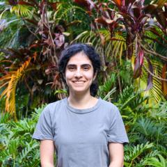 Maral Seidi Damyeh