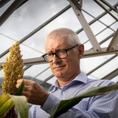 Professor Matthew Morellfrom the Queensland Alliance for Agriculture and Food Innovation